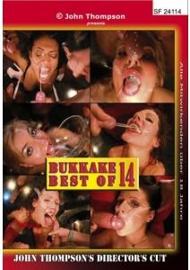 BUKKAKE BEST OF 14