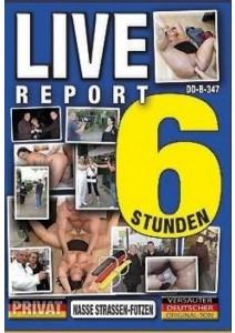 Live-Report - 6 Std.